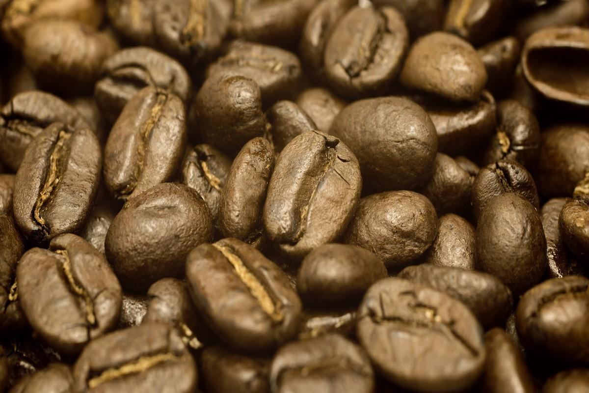 FairtradeQualität8402