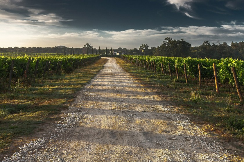 country-lane-428039_1200